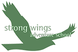 Strong Wings Adventure School, Footer Logo